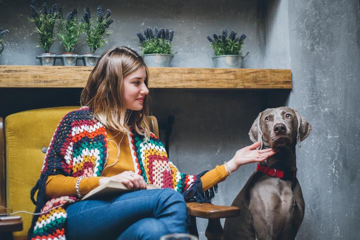 Ventajas de tener un perro en una ciudad