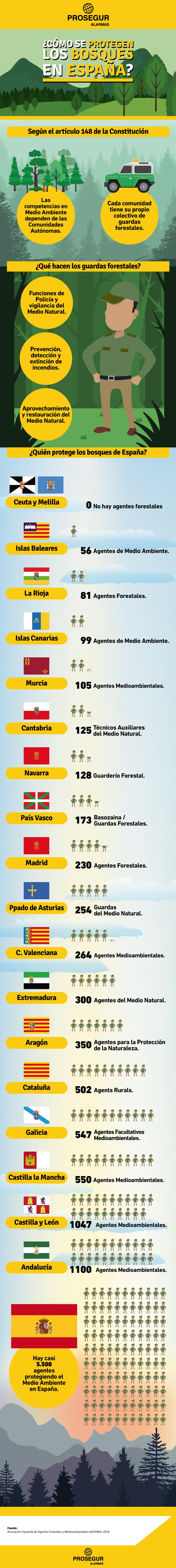 Descubre cómo se protegen los bosques en España y cuántos guardas forestales hay